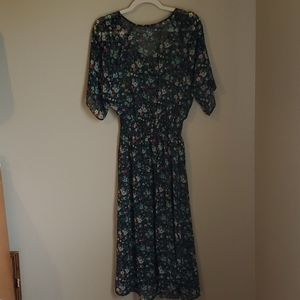Cabi size small Shear Maxi Dress